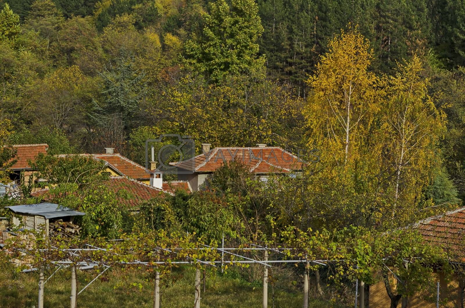 Autumnal colorful forest and houses in the town Maglizh, Balkan mountain, Bulgaria
