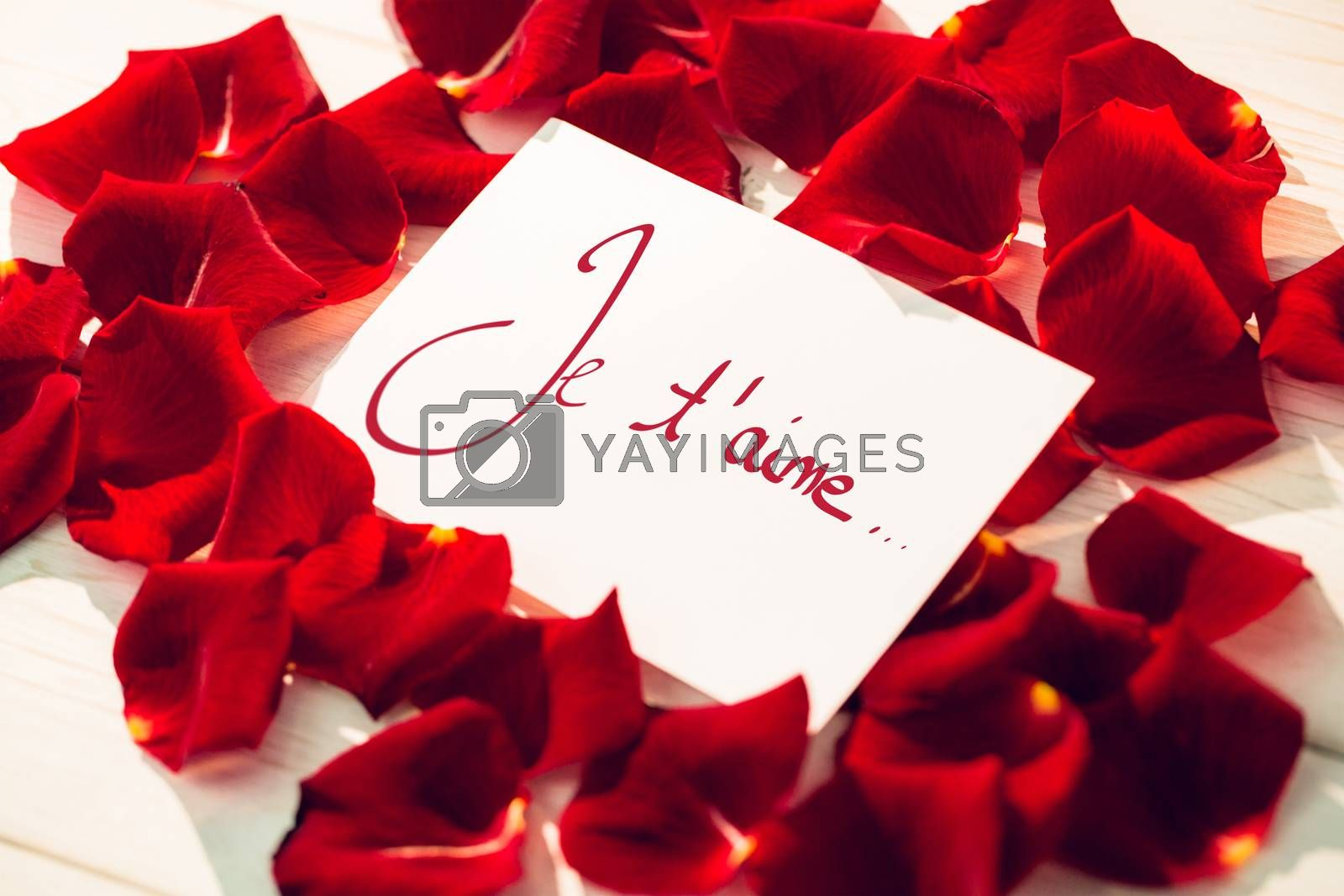 Valentines love hearts against card surrounded by rose petals