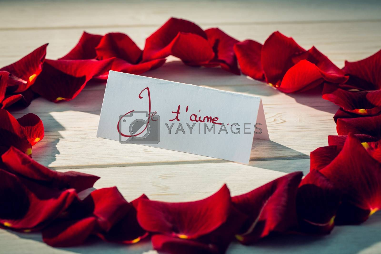 Valentines love hearts against card surrounded by petals