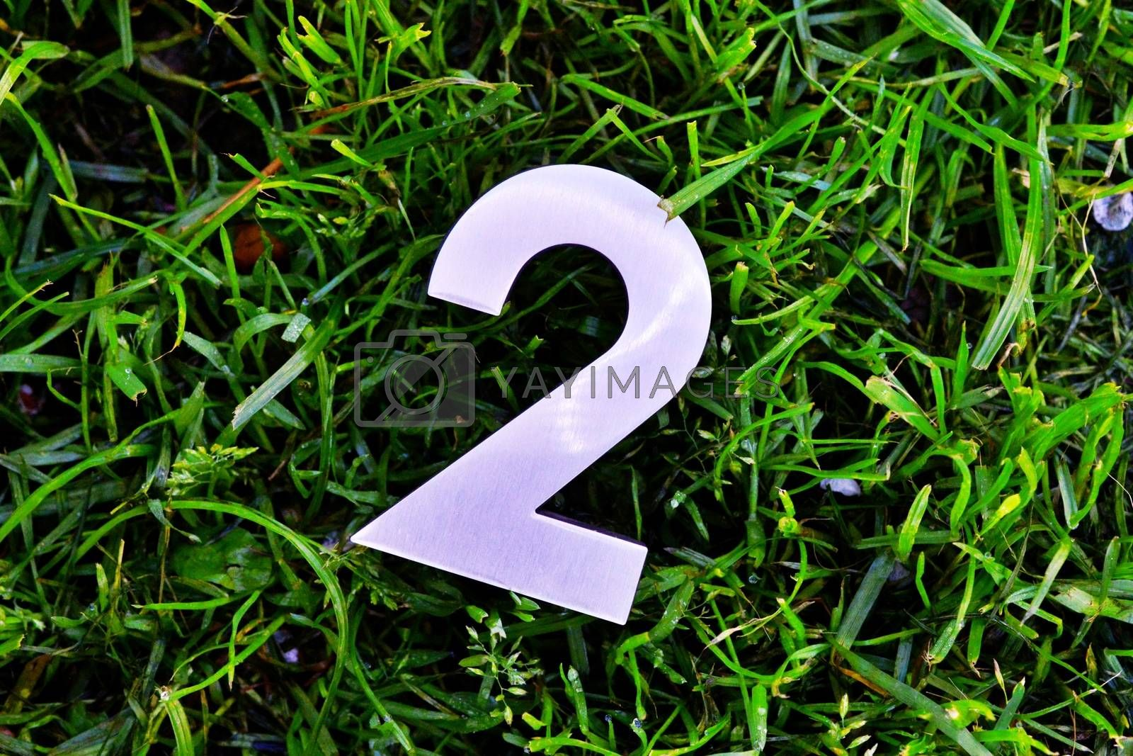 Royalty free image of plastic shining number two on a grass by nehru