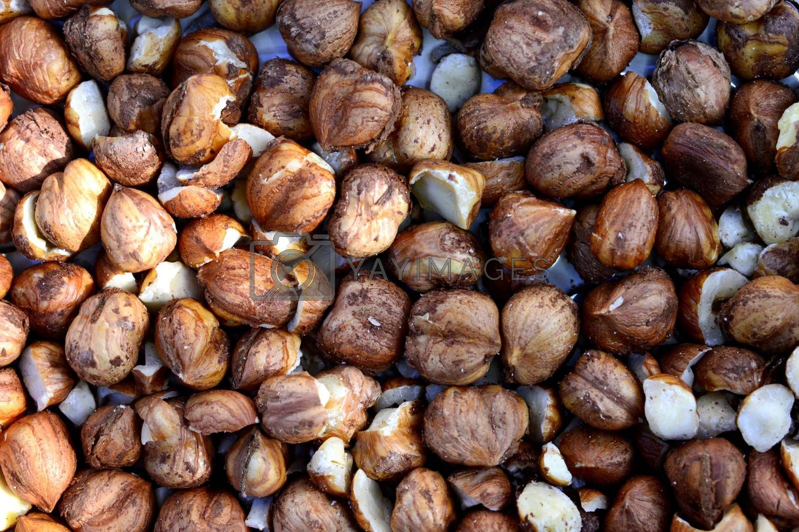 raw organic hazelnuts top view.