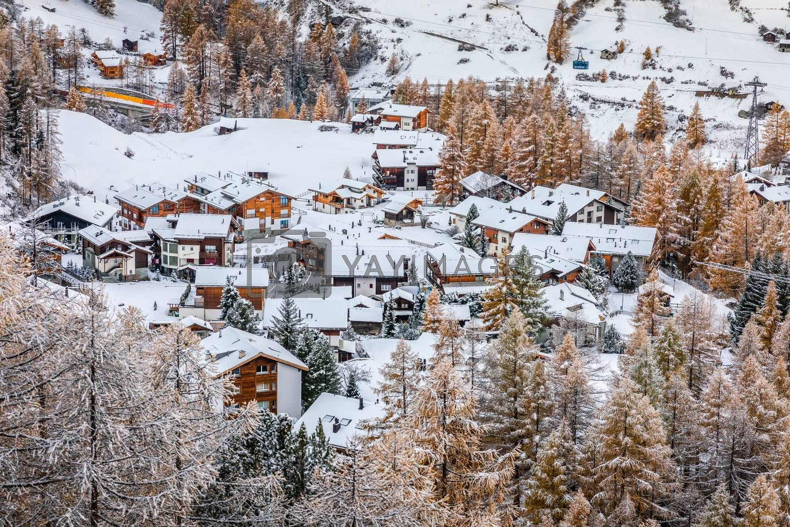 Aerial view over snow capped village on hill slope inside pine woods covered by snow in winter, Zermatt, Switzerland.