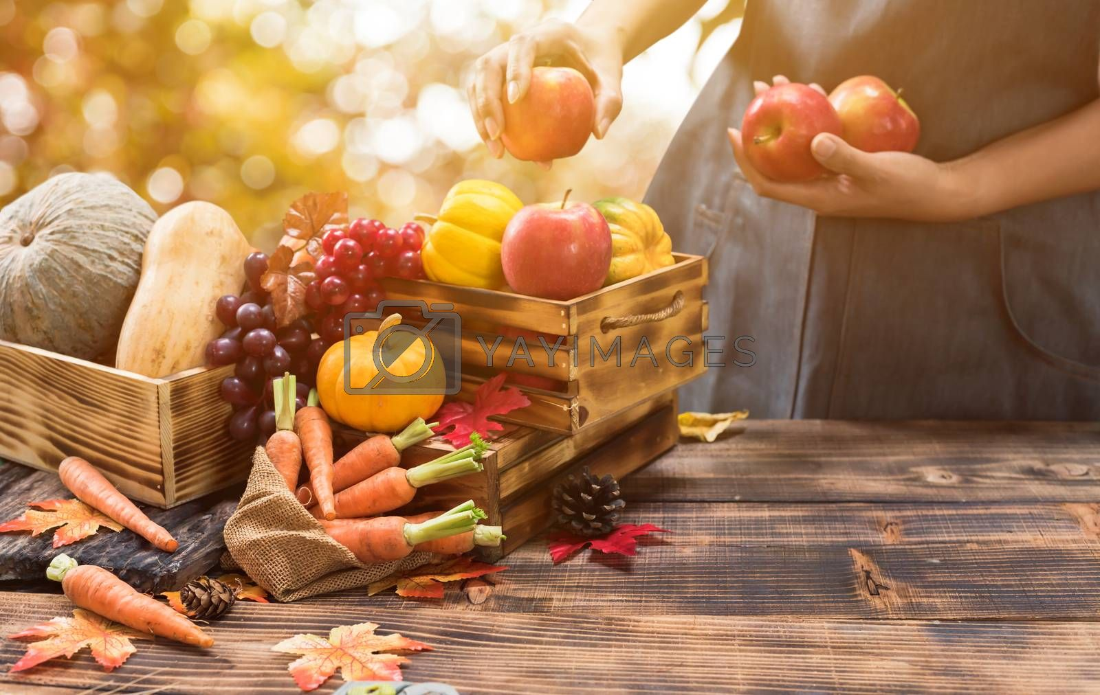 Fall harvest cornucopia. Farmer with fruit and vegetable in Autumn season. Thanksgiving day concept. by graphixchon