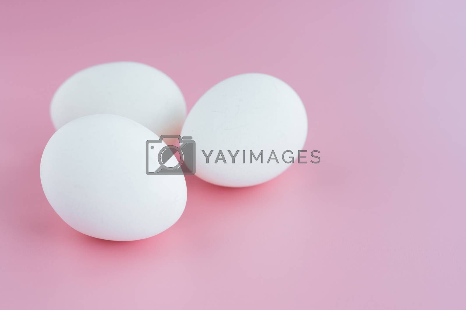 White eggs on pink background for healthy food concept