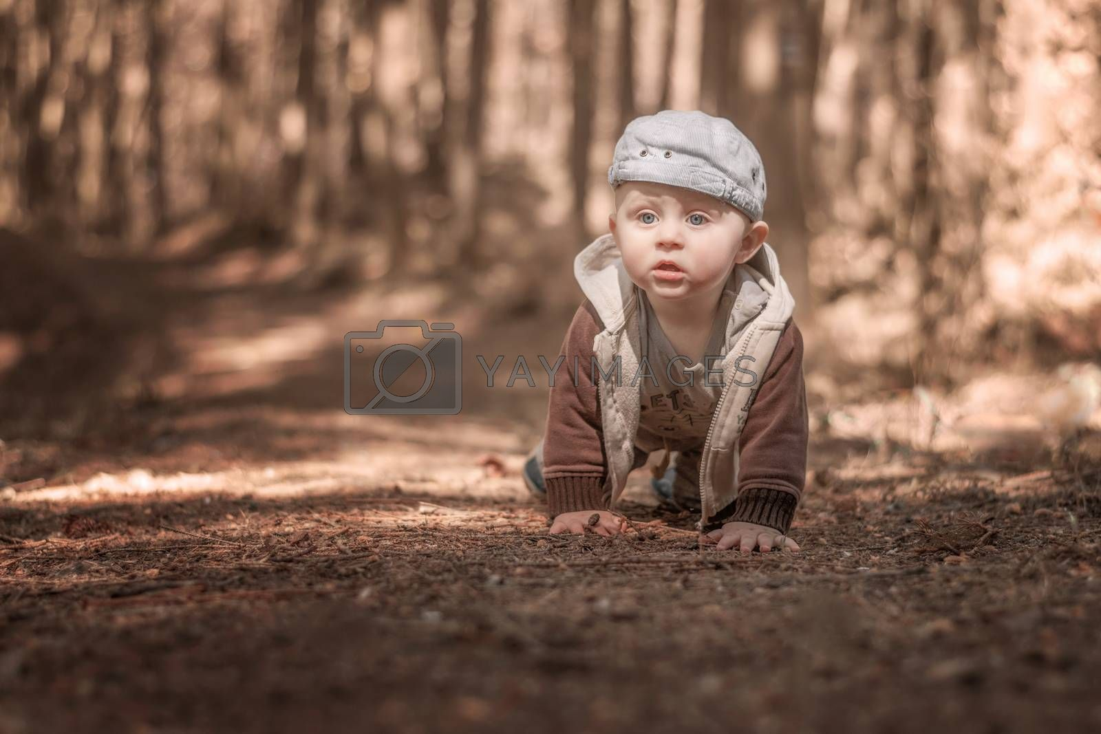A lone little caucasian baby boy climbs a forest path. Blurred background. Monochrome tuning.
