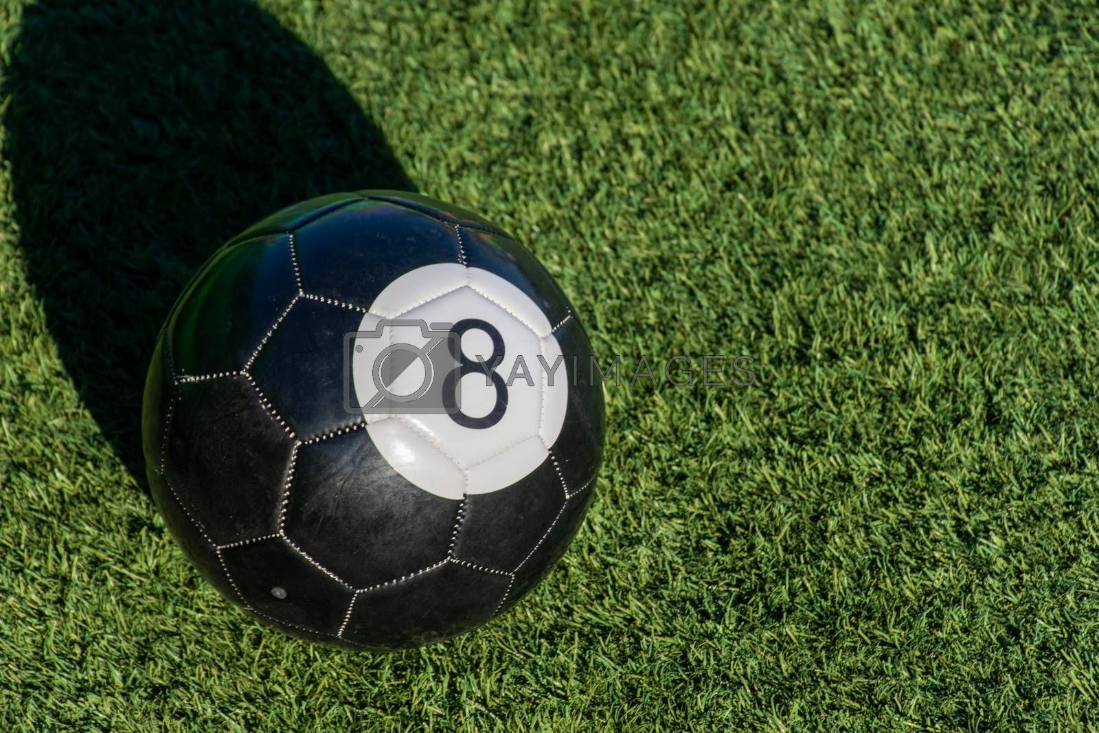 Black Eight (8) ball a soccer billiards or pool ball on green grass with a shadow and copy space. Concept of sports, recreation and childhood fun.