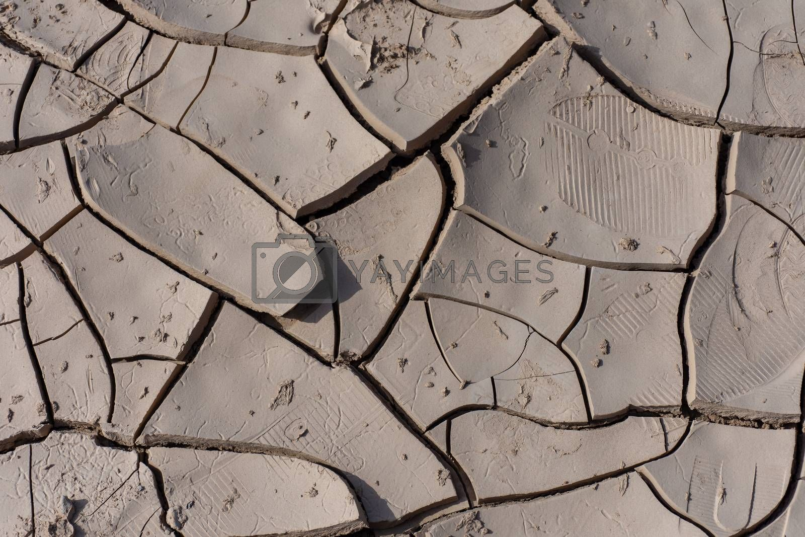 Dried Mud Design in the Sunshine in the desert of the United Arab Emirates (UAE) after a flood and storm near Jebal Jais mountain in Ras al Khaimah.