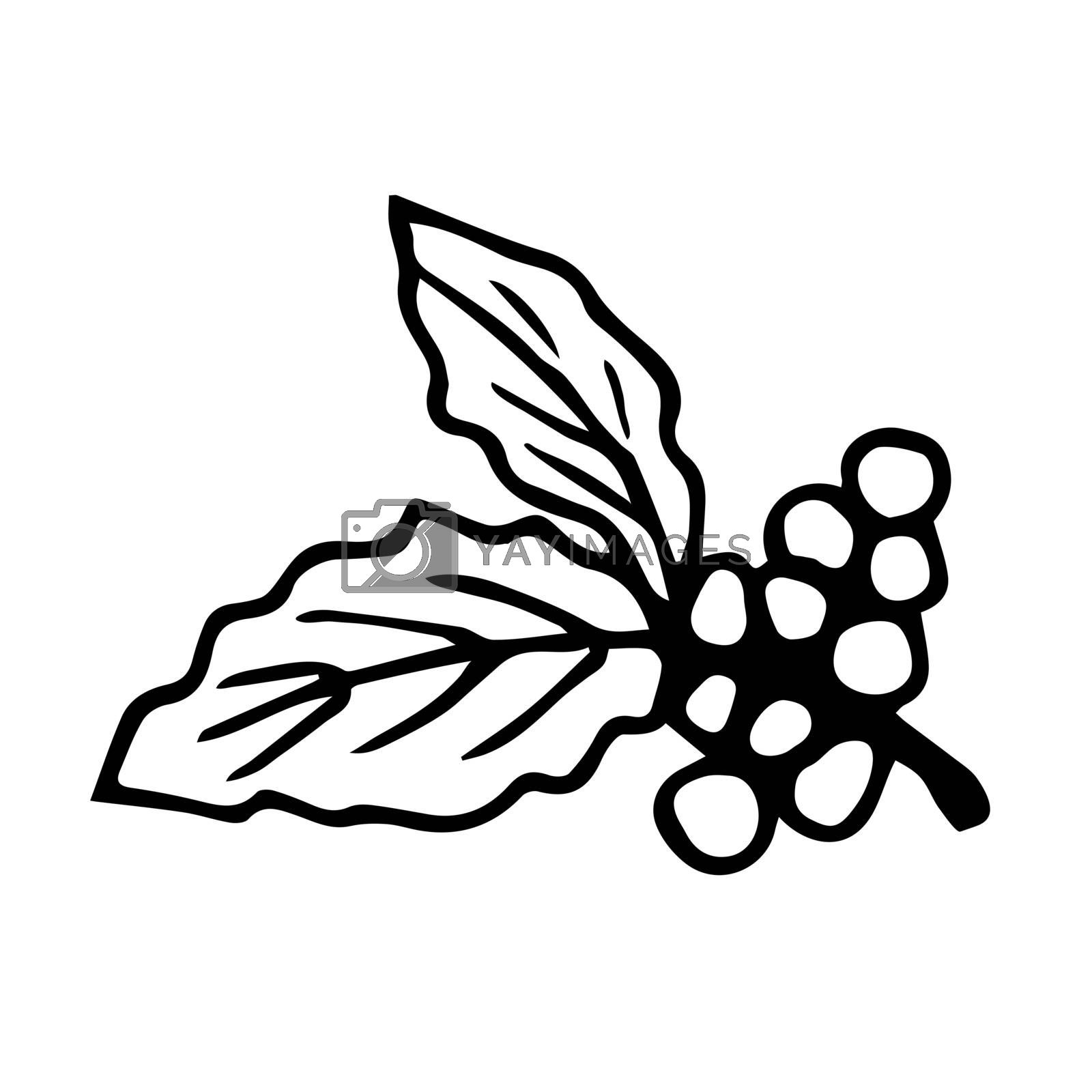 Hand-drawn black outline simple vector drawing. Branch with coffee berries, leaves isolated on a white background. element of nature, product, crop, growing, label.