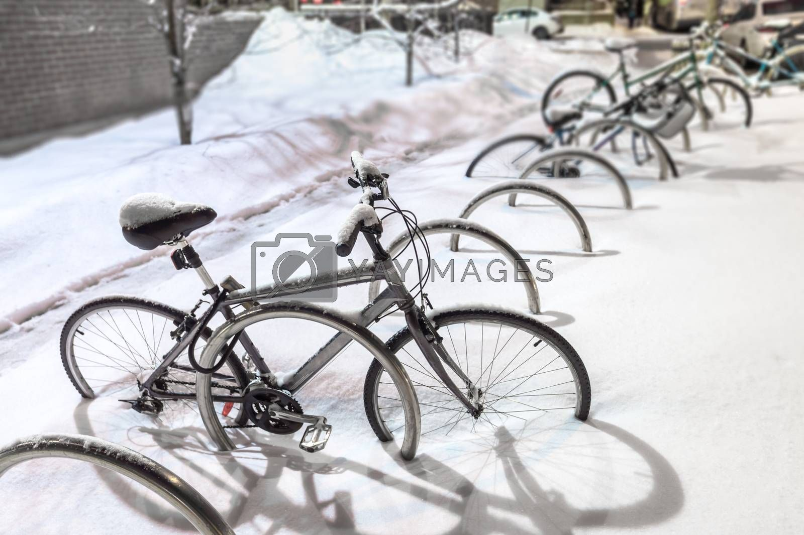Bike covered in snow during snow storm by mbruxelle
