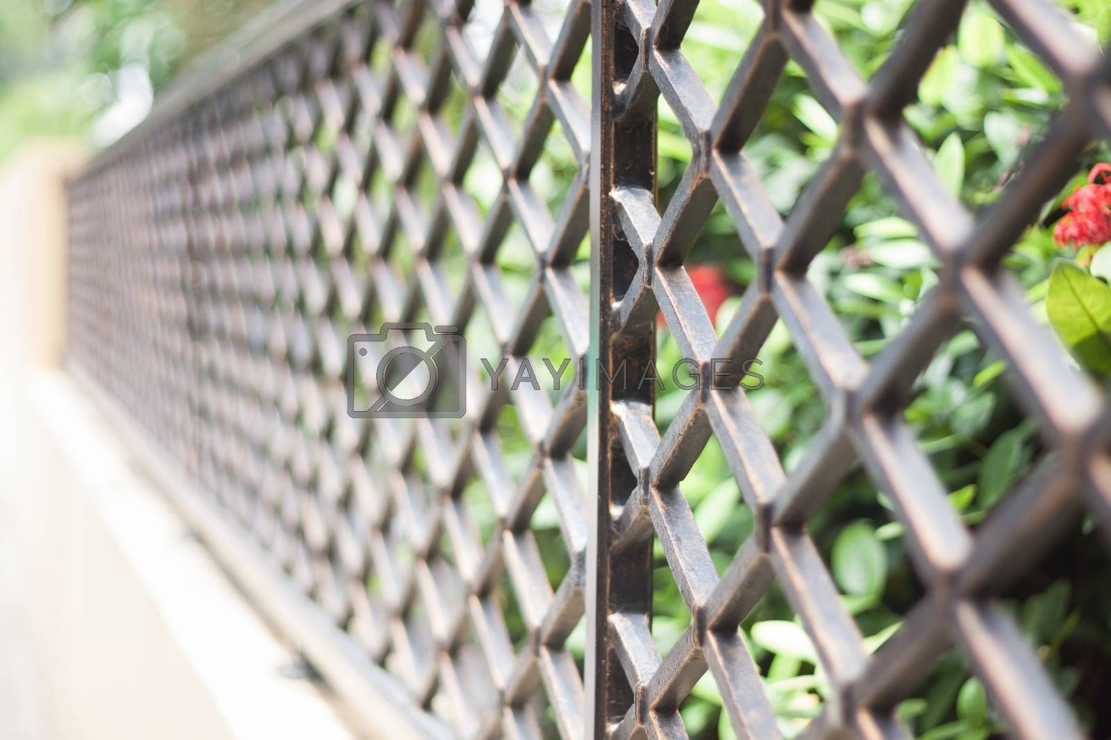 Aluminum Fence in private zone by punsayaporn
