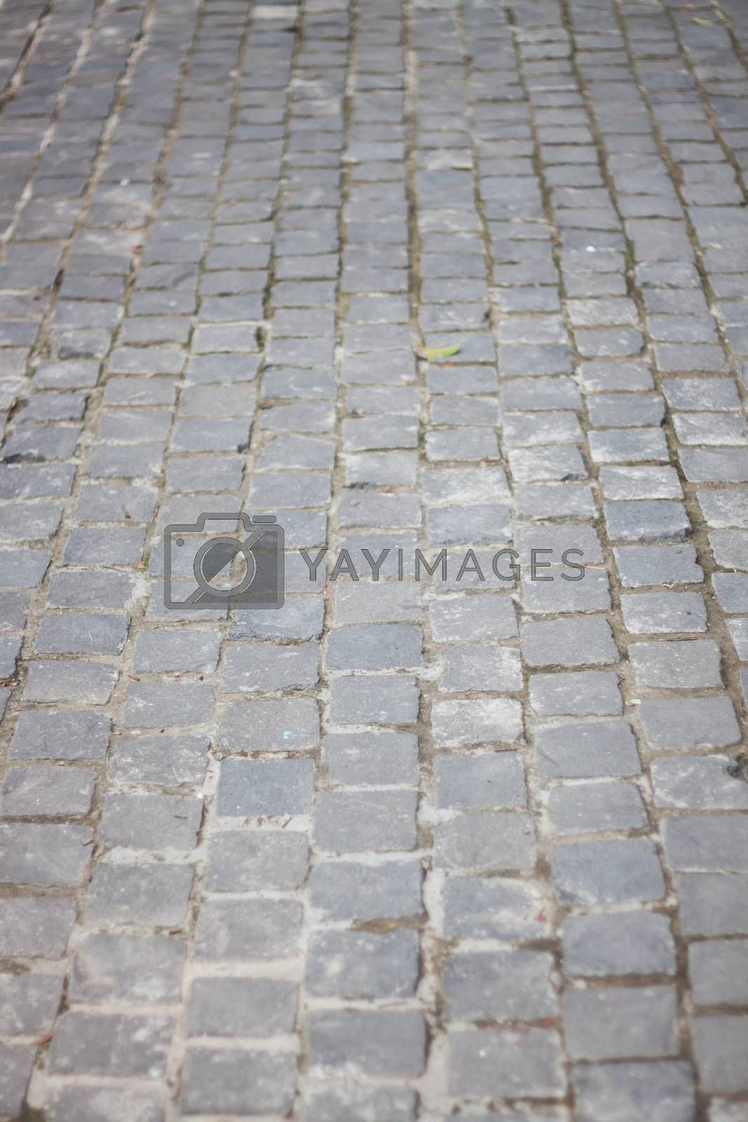 Concrete bricks path walk way, stock photo