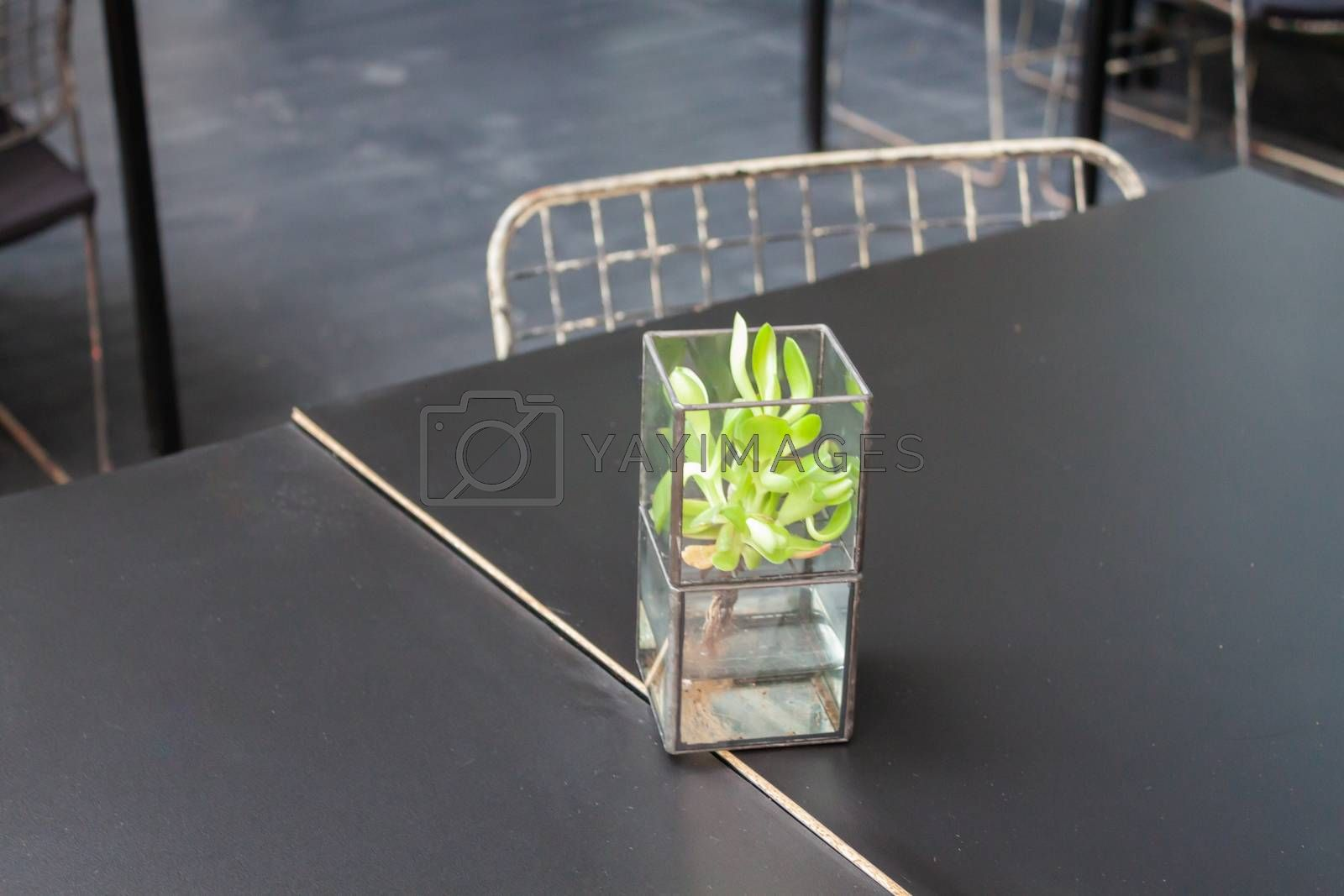 Element decorated in coffee shop, stock photo