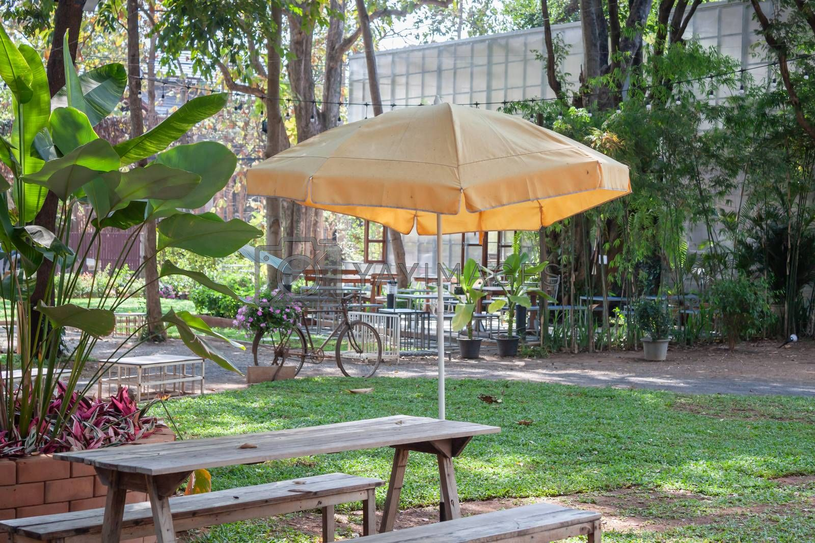 Garden decorated in coffee shop, stock photo