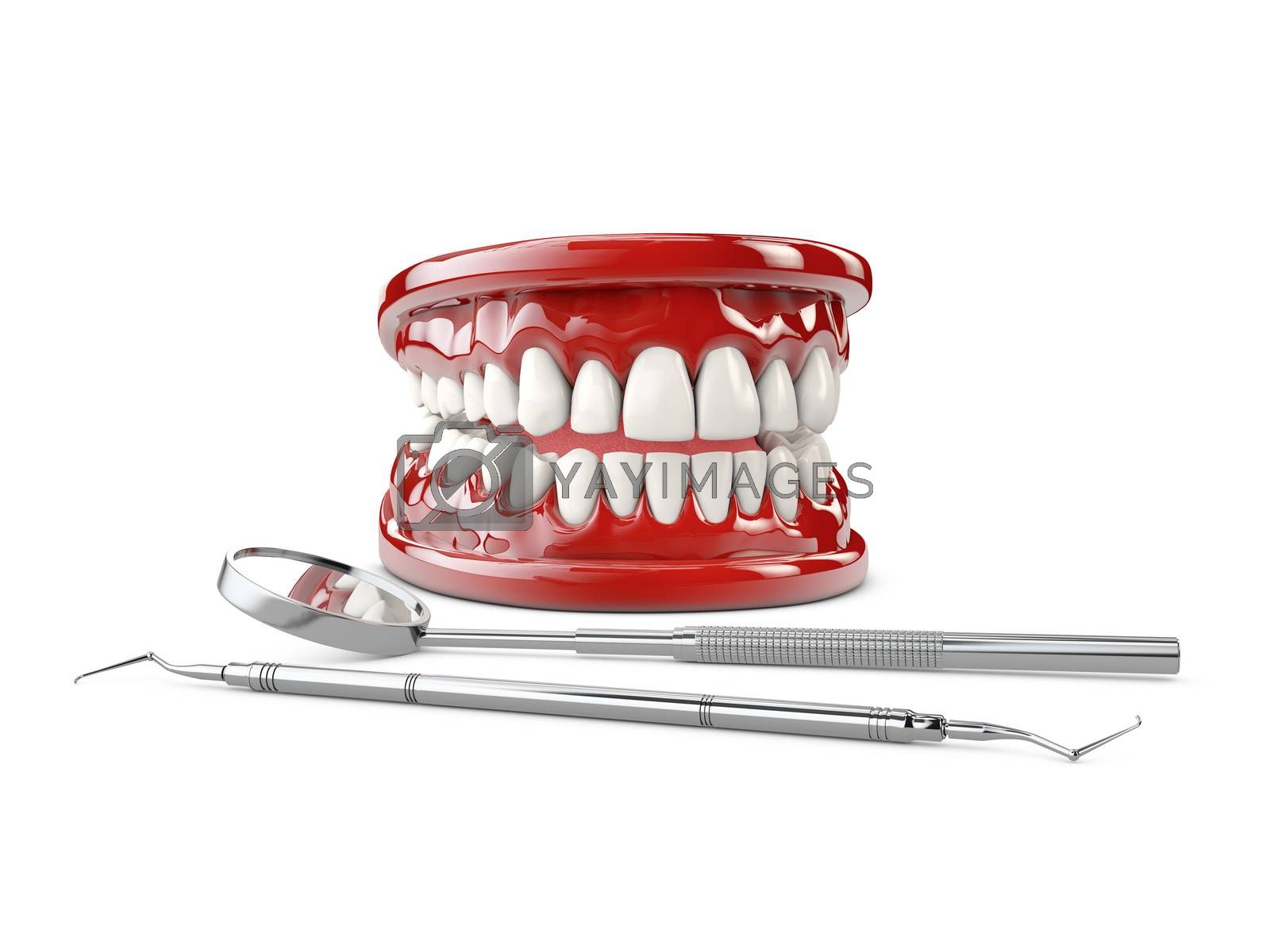 White healthy perfect teeth plastic model, Dental health 3d illustration.