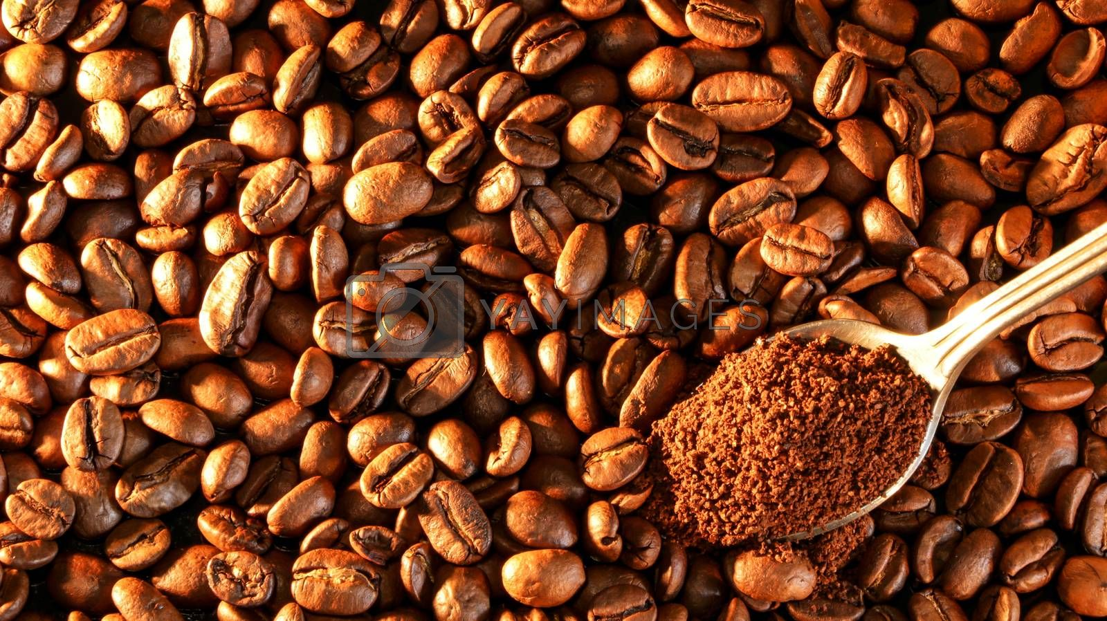 Coffee beans close-up with a spoon of ground coffee.
