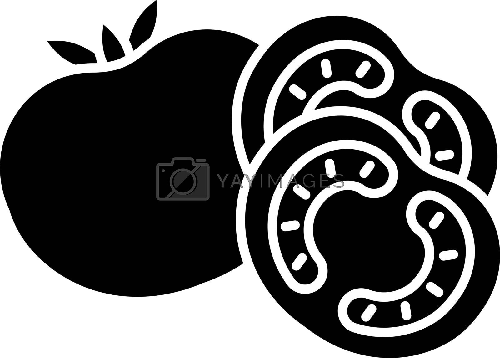 Tomato black glyph icon. Ketchup sauce recipe. Fresh vegetable and nourishment. Nutrient food with vitamin. Vegan salad ingredient. Silhouette symbol on white space. Vector isolated illustration