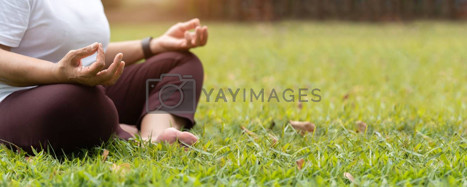 Closeup on hands. Asian Senior Woman in white shirt practicing Yoga at park. Meditation position with Copy space. Banner, Panoramic.