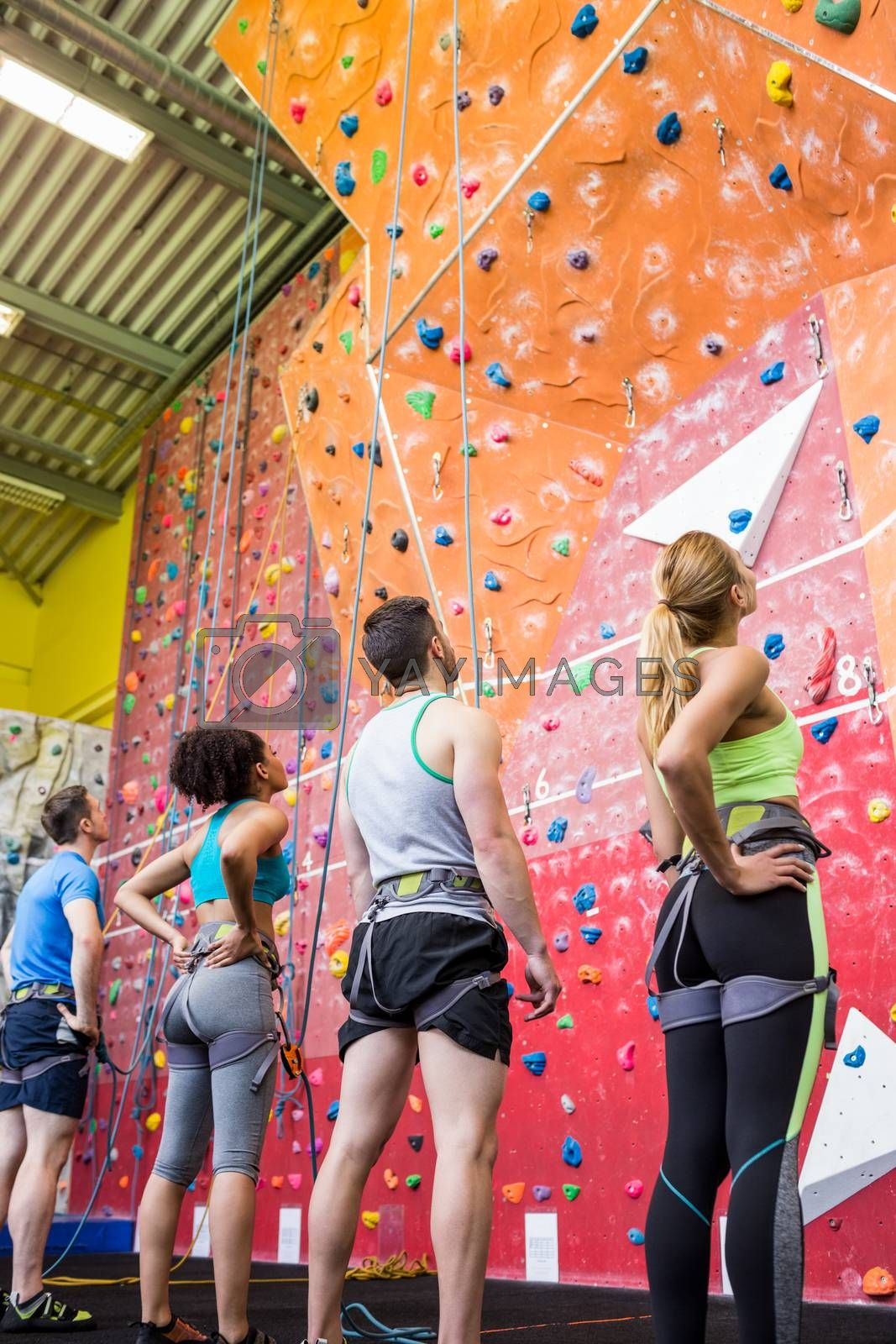 Fit people ready to rock climb at the gym