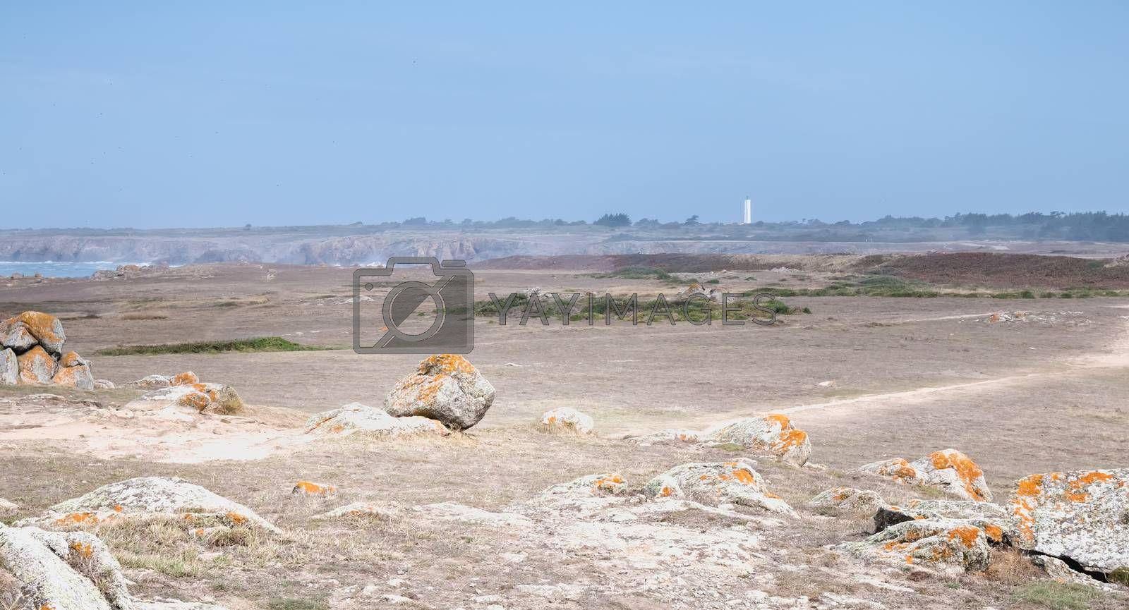 view of the rocky dune of Ile d'Yeu next to the sea with its small beach house, France