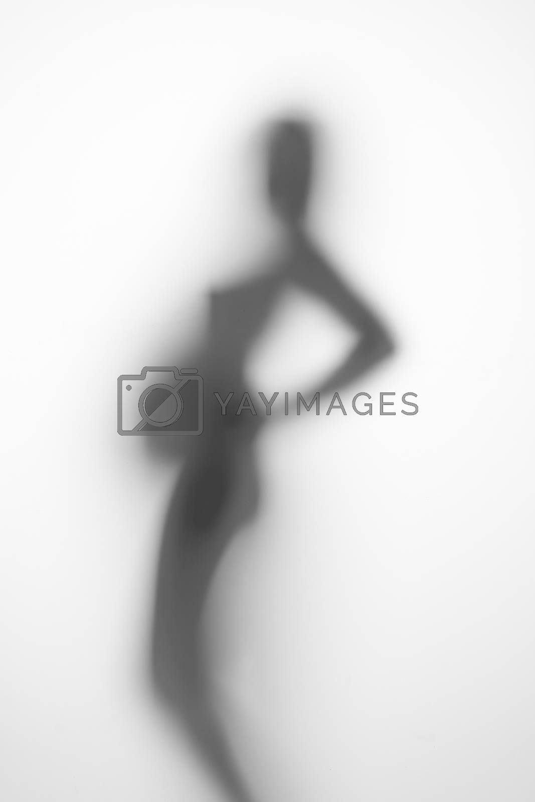 silhouette of a pregnant woman on a light background by A_Karim