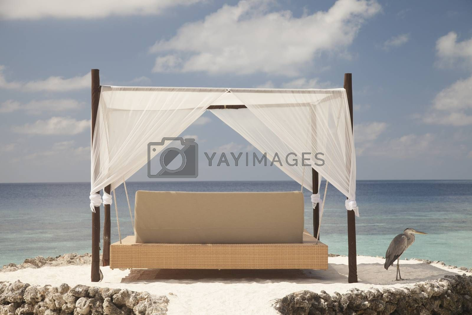 hanging bed in the Maldives by maselkoo99
