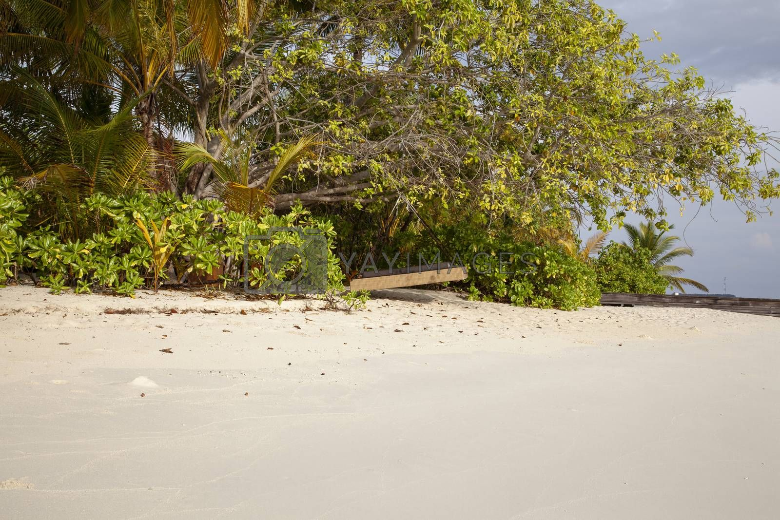 hanging bed on the beach in the Maldives by maselkoo99