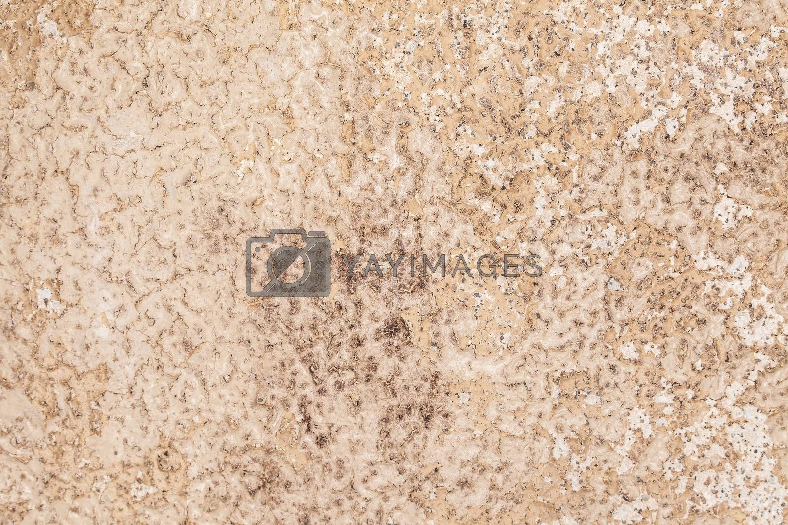 sand-colored marble