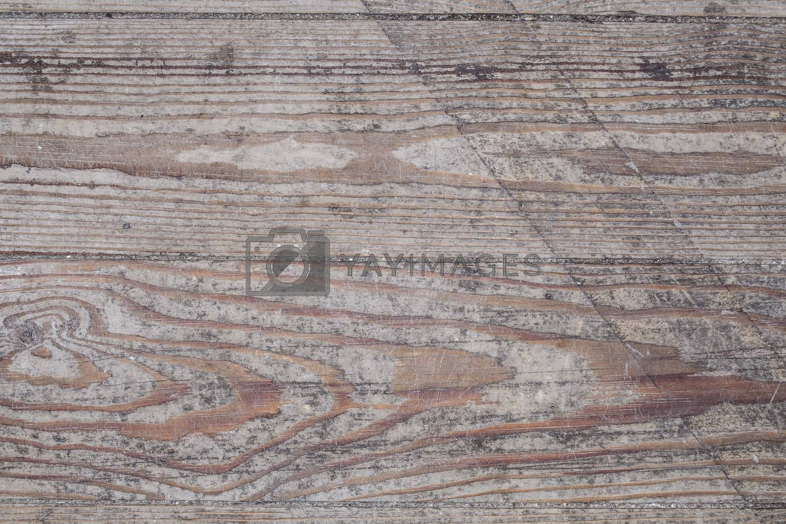 old wood macro