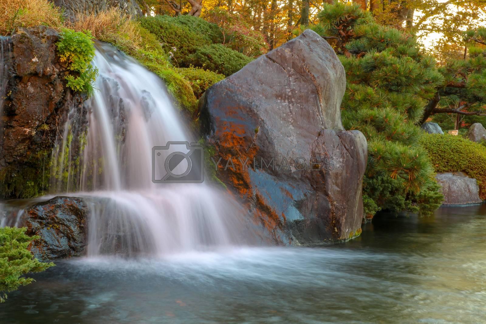 Close up beautiful waterfall in autumn at japan .