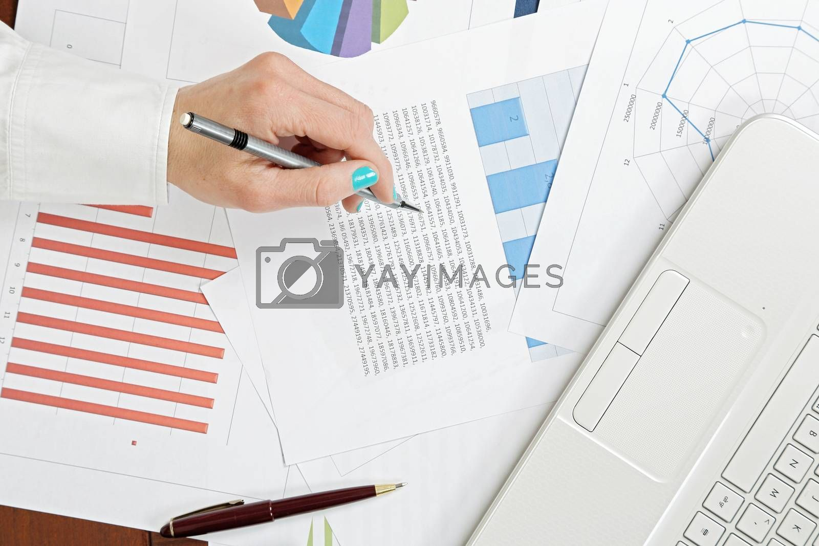 woman is analysing graphs and graphs