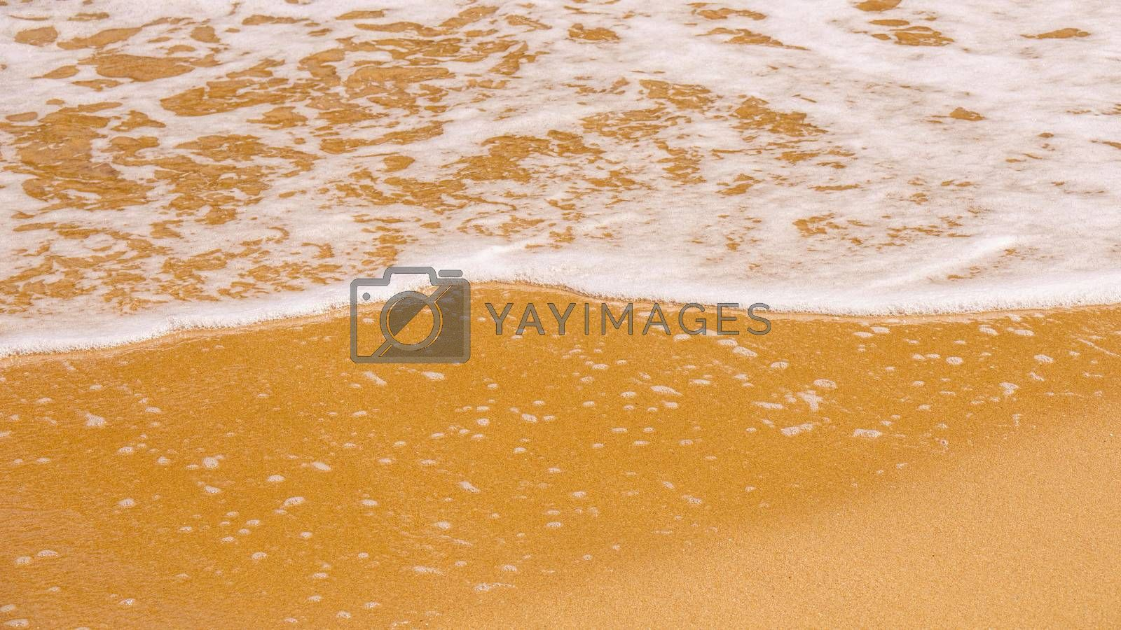 An image of a sandy beach shore line texture background