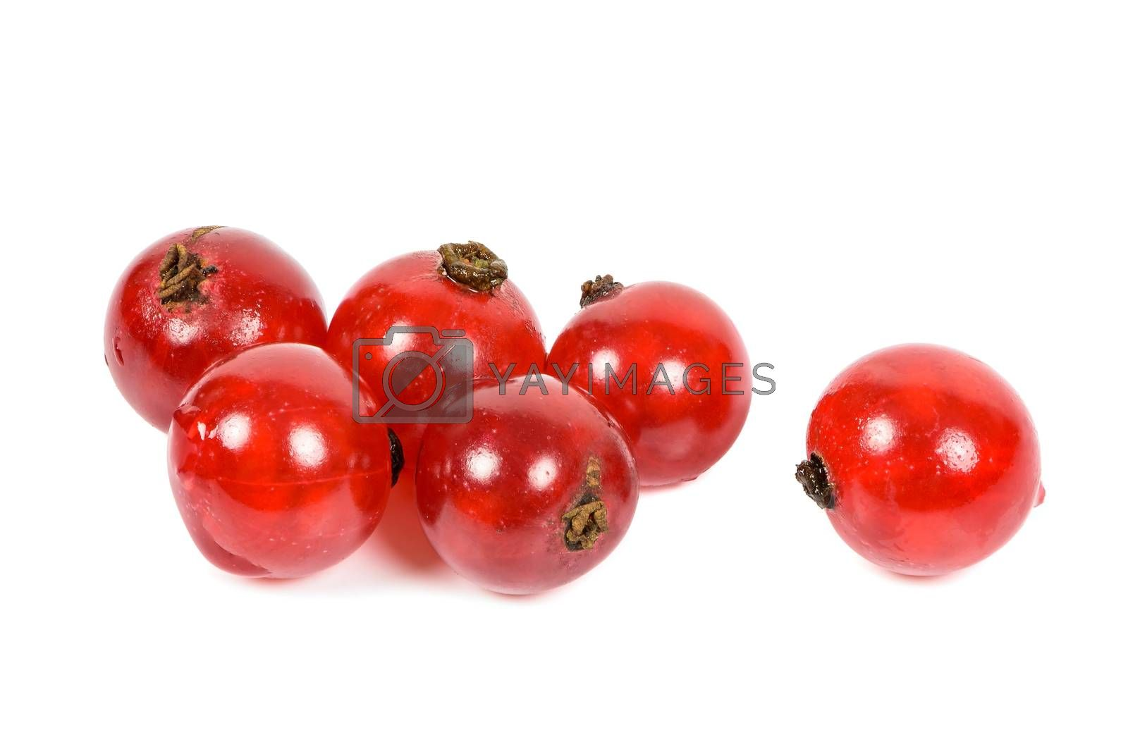 Closeup of red currants isolated on white background with clipping path