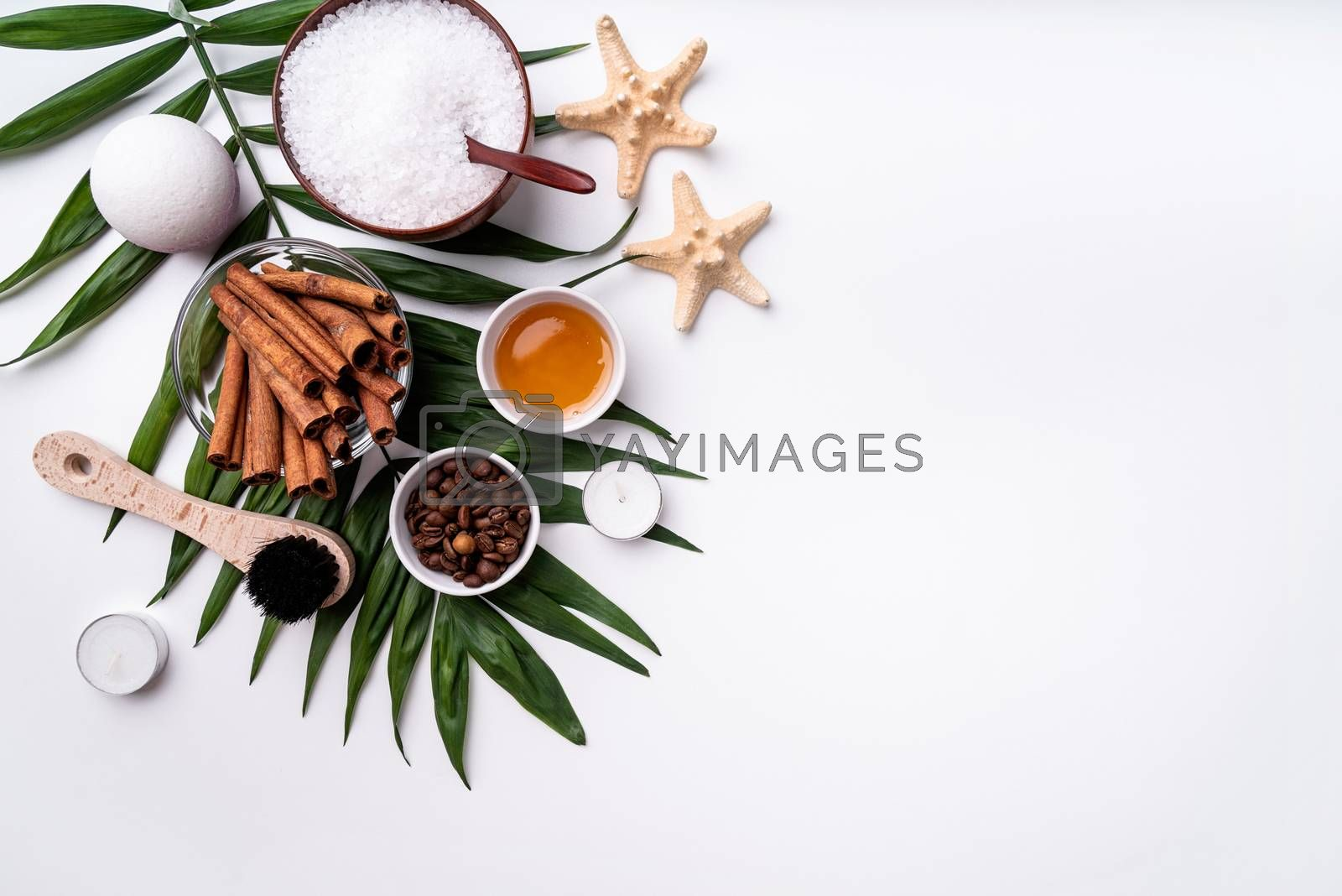 Natural cosmetics or spa set on palm leaf top view with copy space