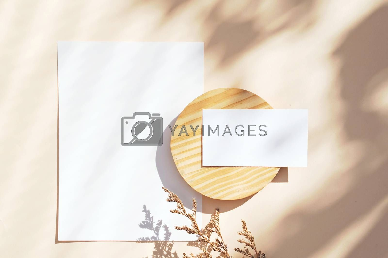 Flat lay of branding identity business name card on yellow background with flower, light and shadow shape leaves, minimal concept for design