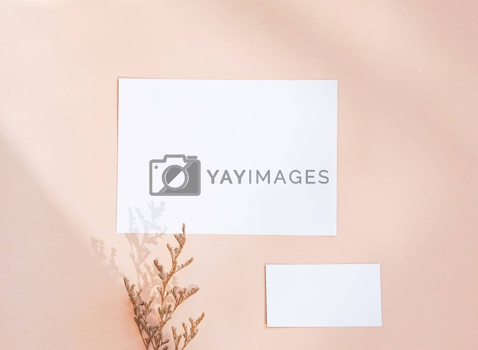 Flat lay of branding identity business name card on yellow background with flower, minimal light and shadow concept for design
