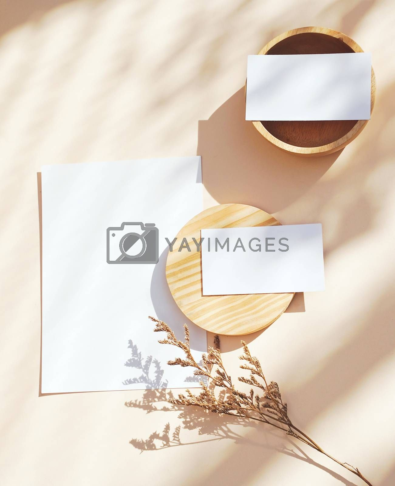 Royalty free image of Flat lay of branding identity business name card on yellow backg by nuchylee