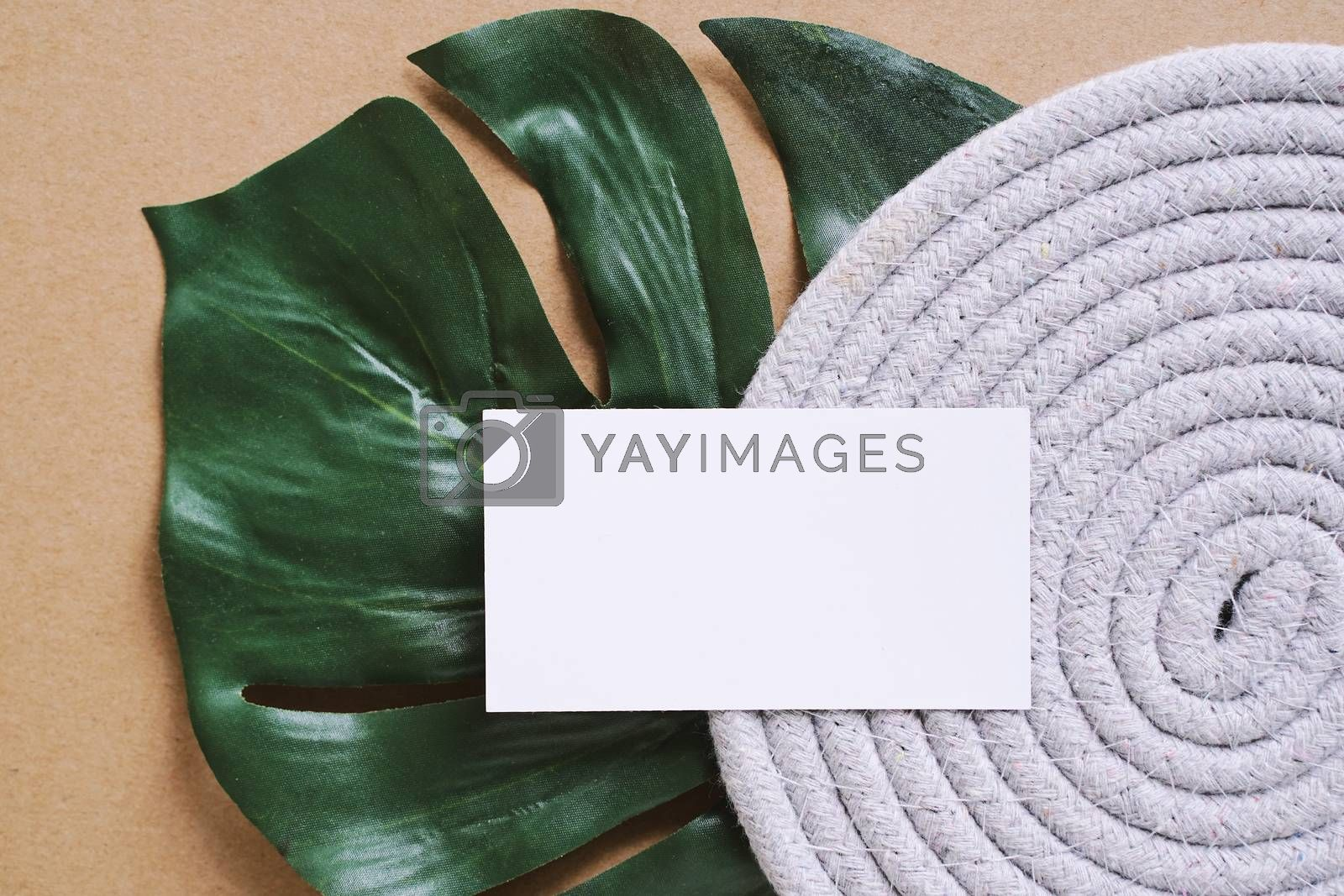 Royalty free image of Flat lay of branding identity business name card on green plant  by nuchylee