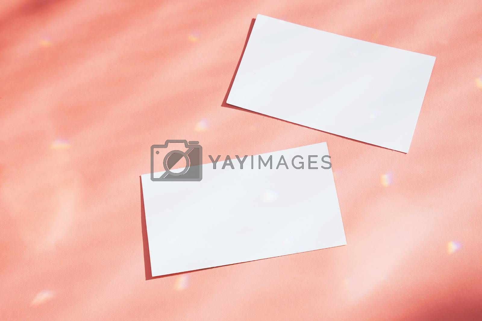 Flat lay of branding identity business name card on orange background with sparkle light and shadow, minimal design