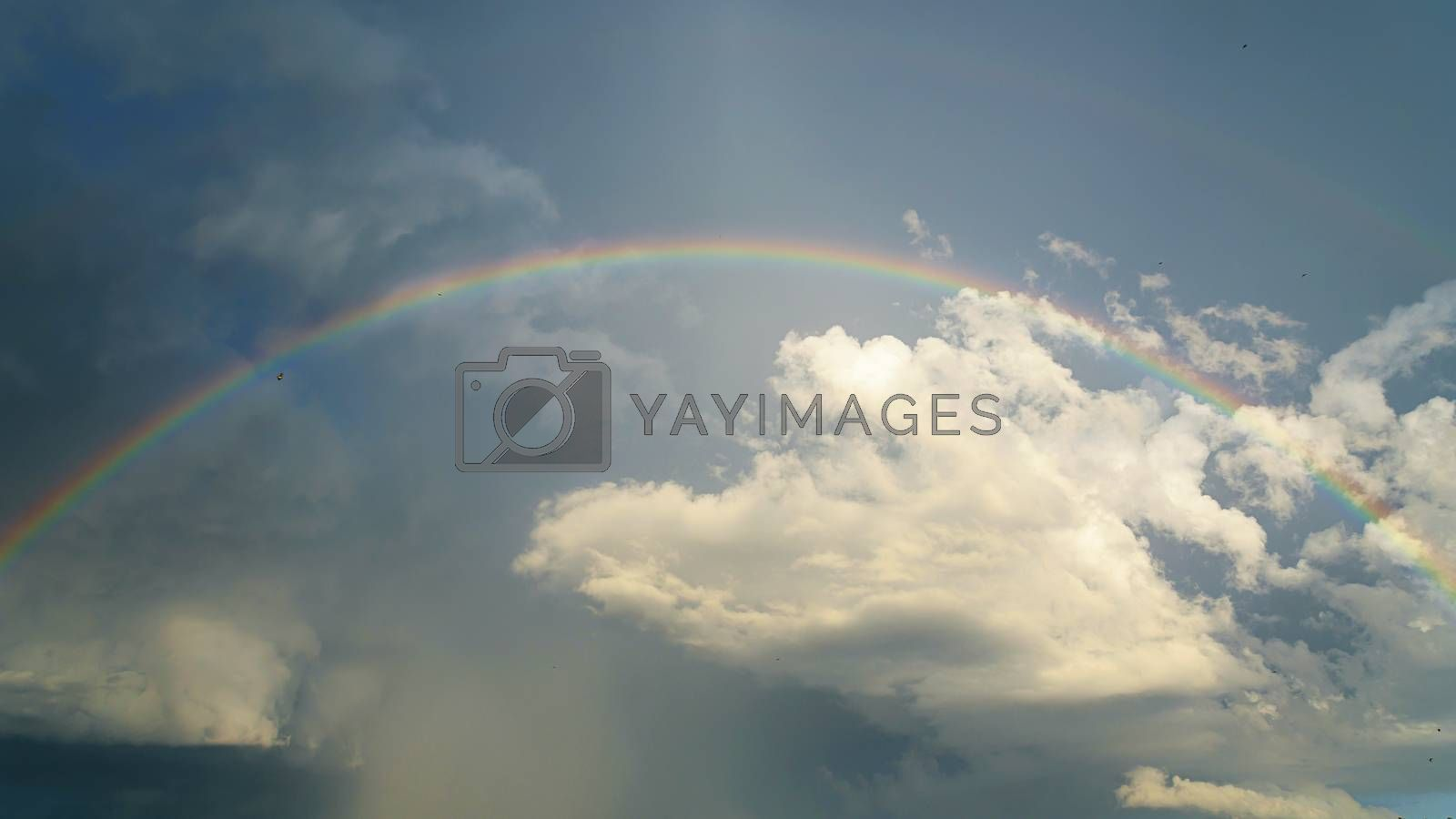 A colorful rainbow on the sky after thunderstorm