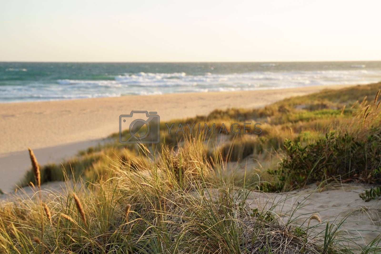 Royalty free image of Beautiful view beach of lakes entrance with sunset in Victoria,  by nuchylee