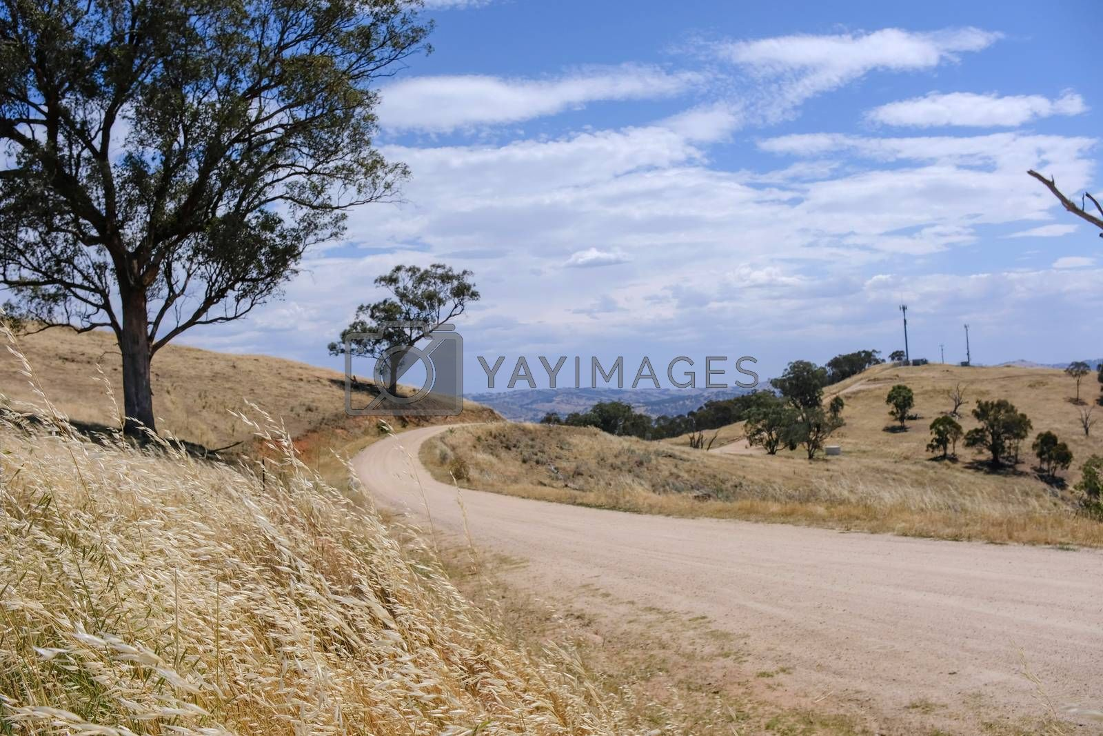 Royalty free image of Scenic view road to the hill on the way of Tallangatta in Victor by nuchylee