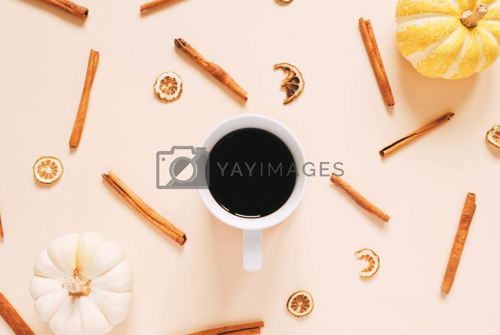 Flat lay style of autumn and thanksgiving concept with coffee, pumpkins and cinnamon sticks on pastel color, top view