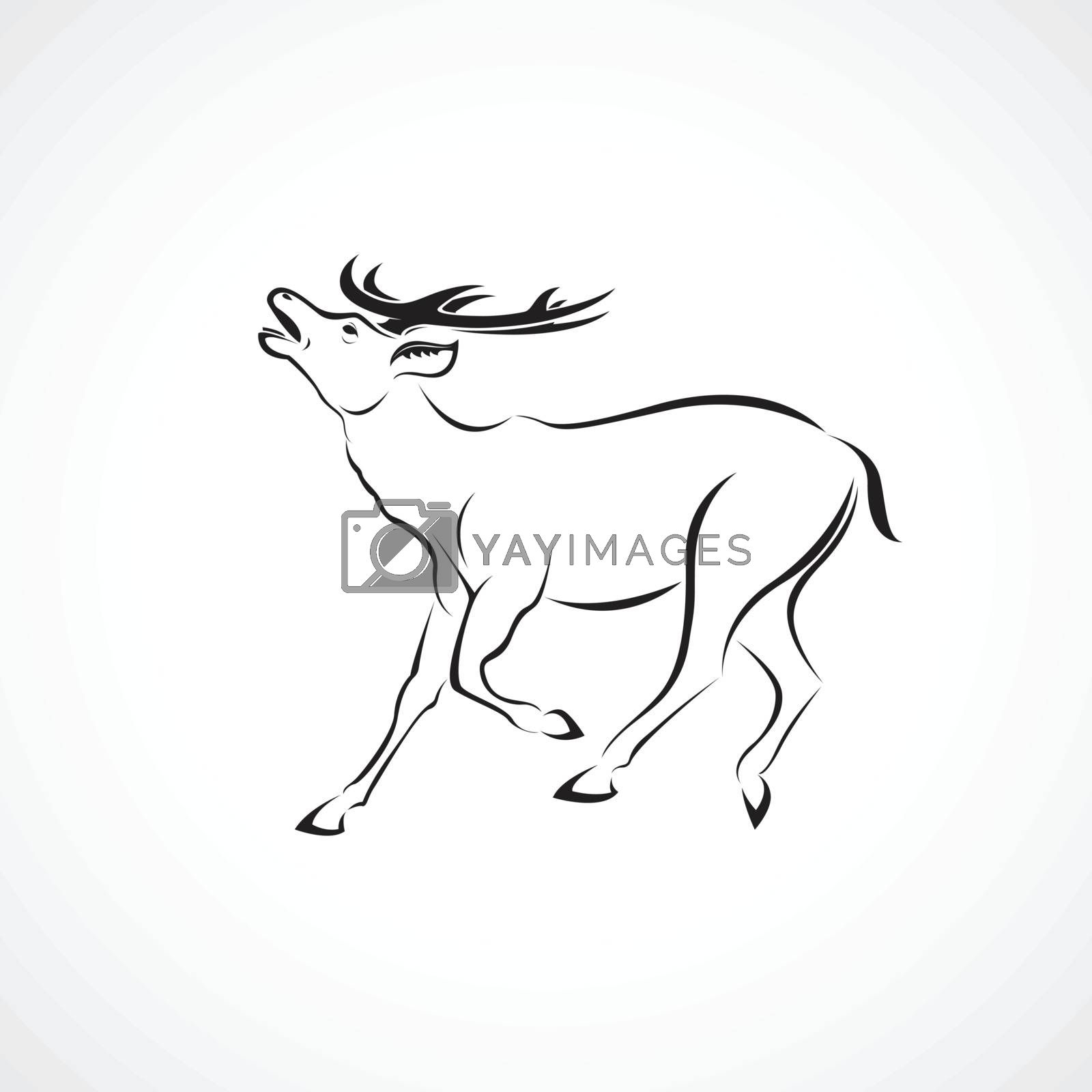 Vector of a deer design on white background. Wild Animals. Easy editable layered vector illustration.