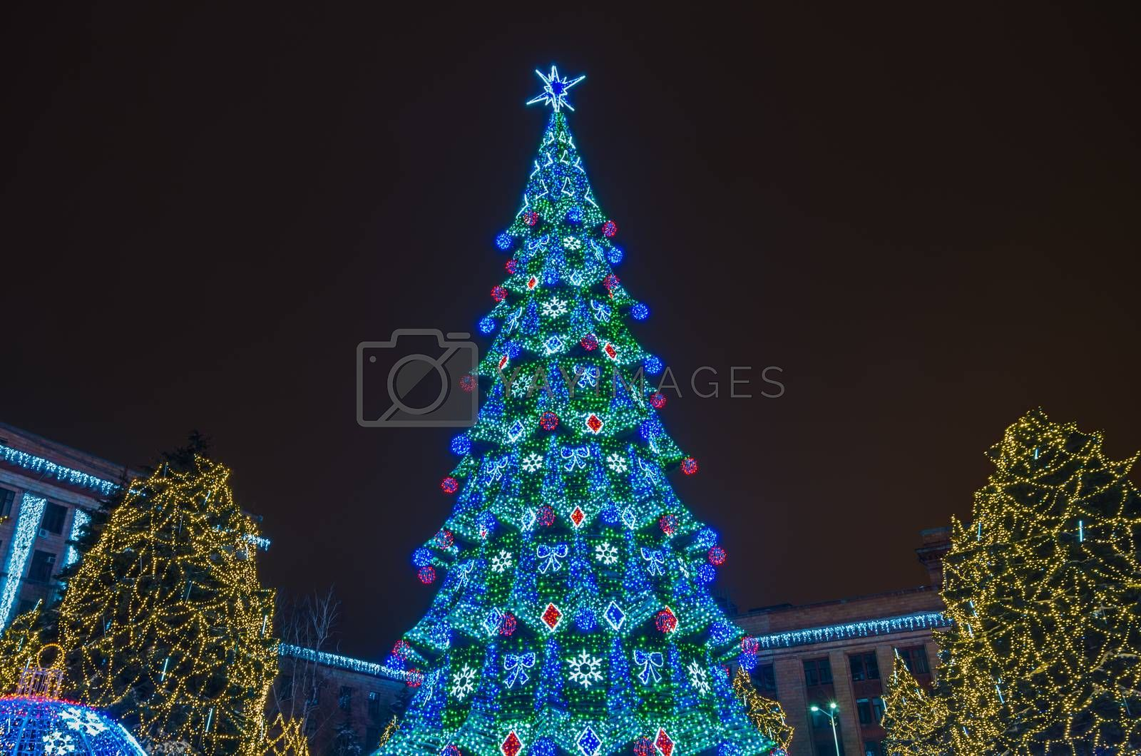 Lighted Christmas tree in night city park in 2015.