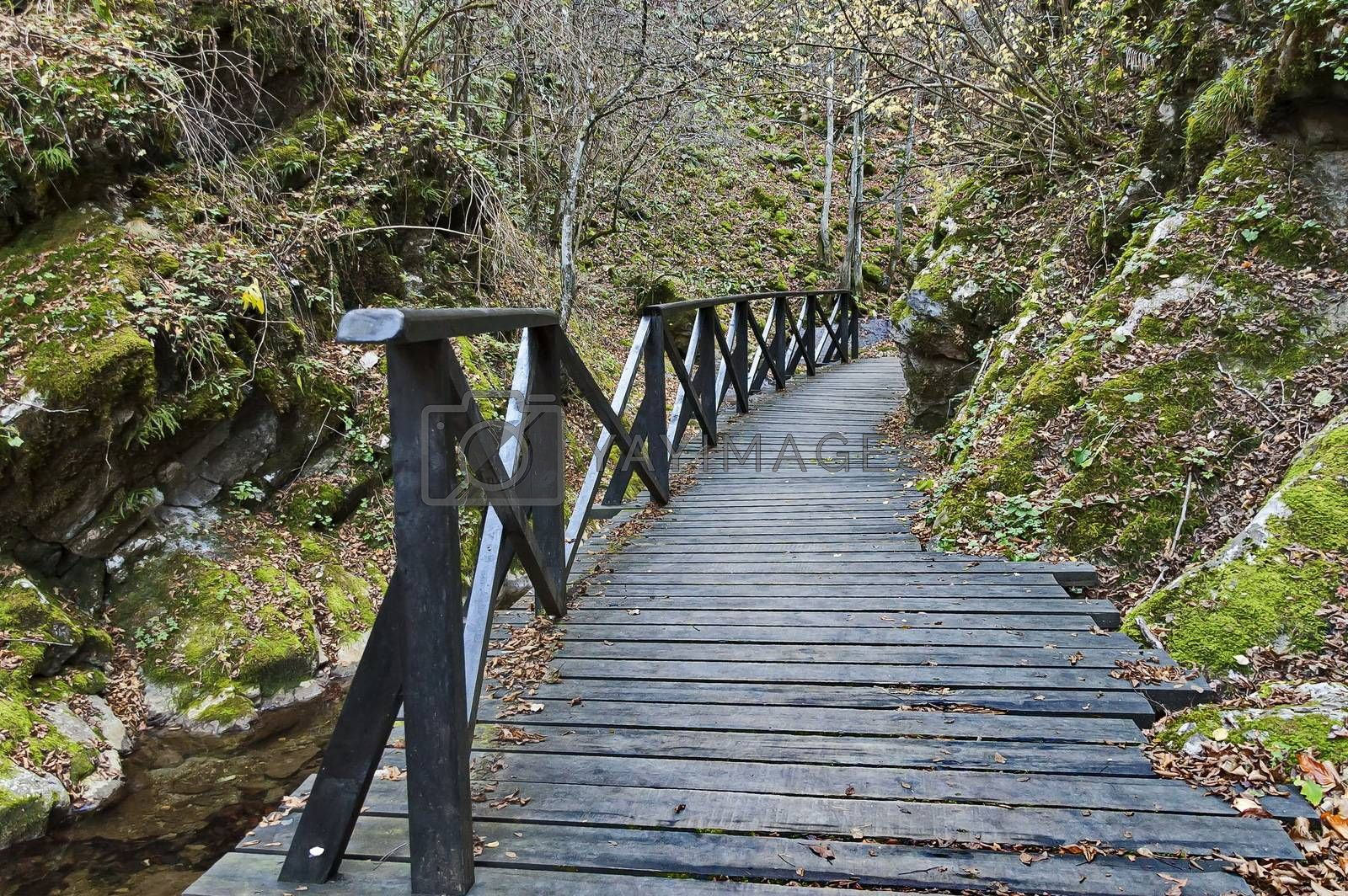 Autumn walk through the labyrinth of the Teteven Balkan with high peaks, river and bridge, Stara Planina, Bulgaria