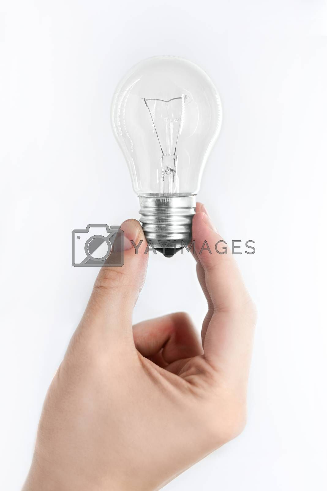 bulb in hand isolated on white background