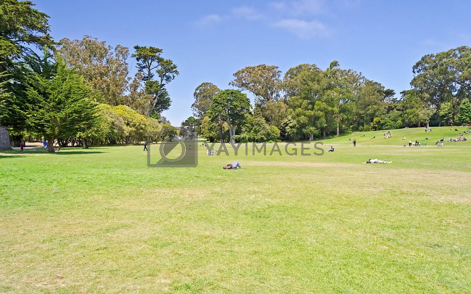 Golden Gate Park, San Francisco, California, USA