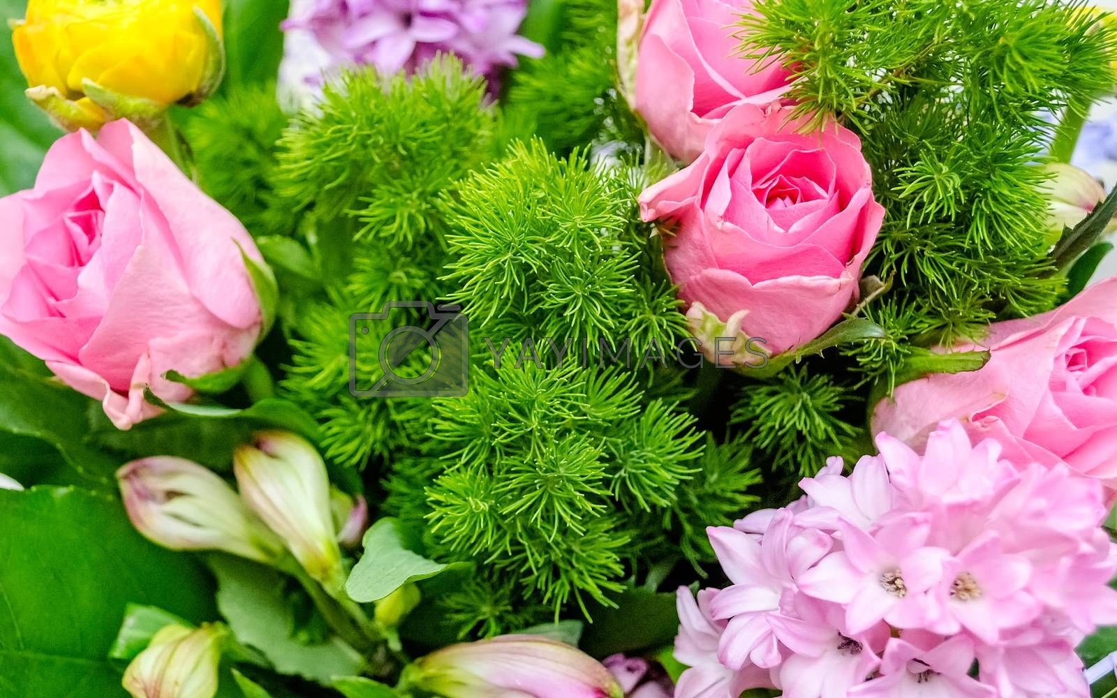 Colorful mix of flowers. May be used as background