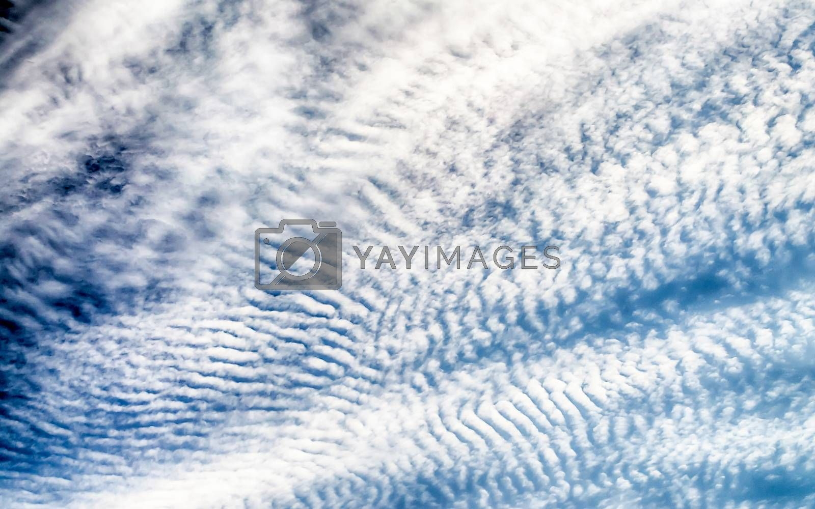 Blue Sky with Stripes Clouds Texture with copy space, may use as background