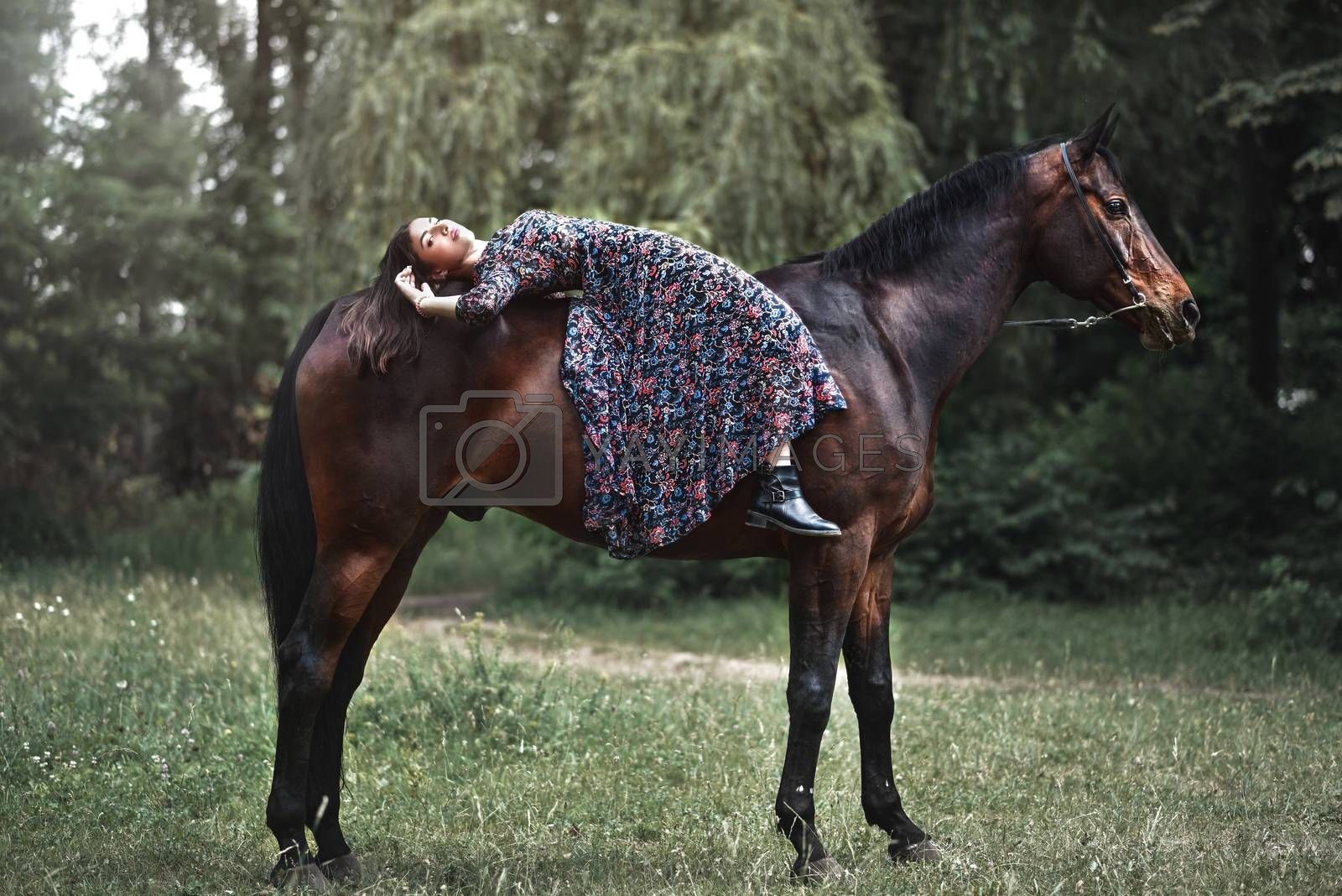 Young pretty girl laying on horseback in the forest